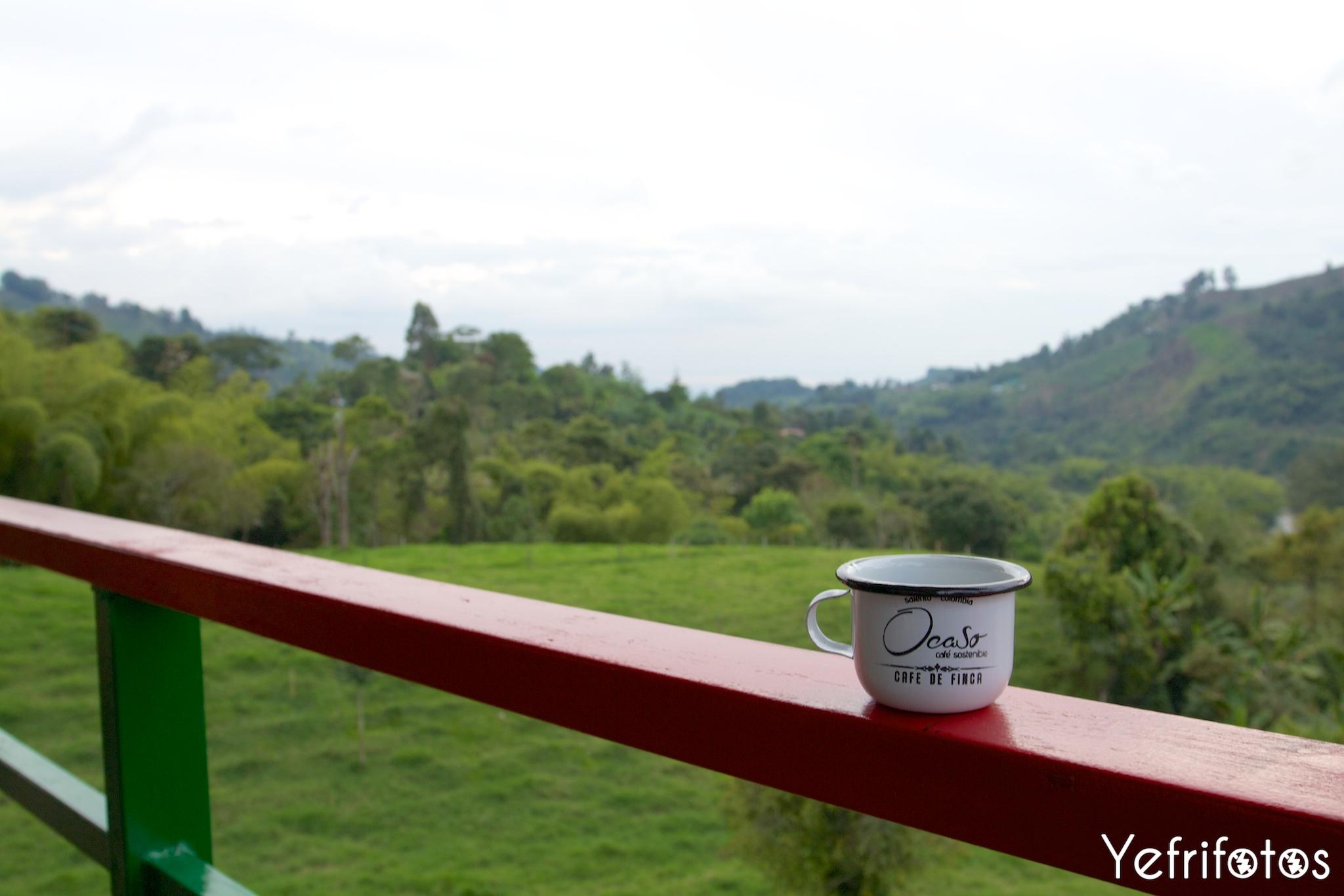 Café - Ocaso - Finca - Colombie - Salento