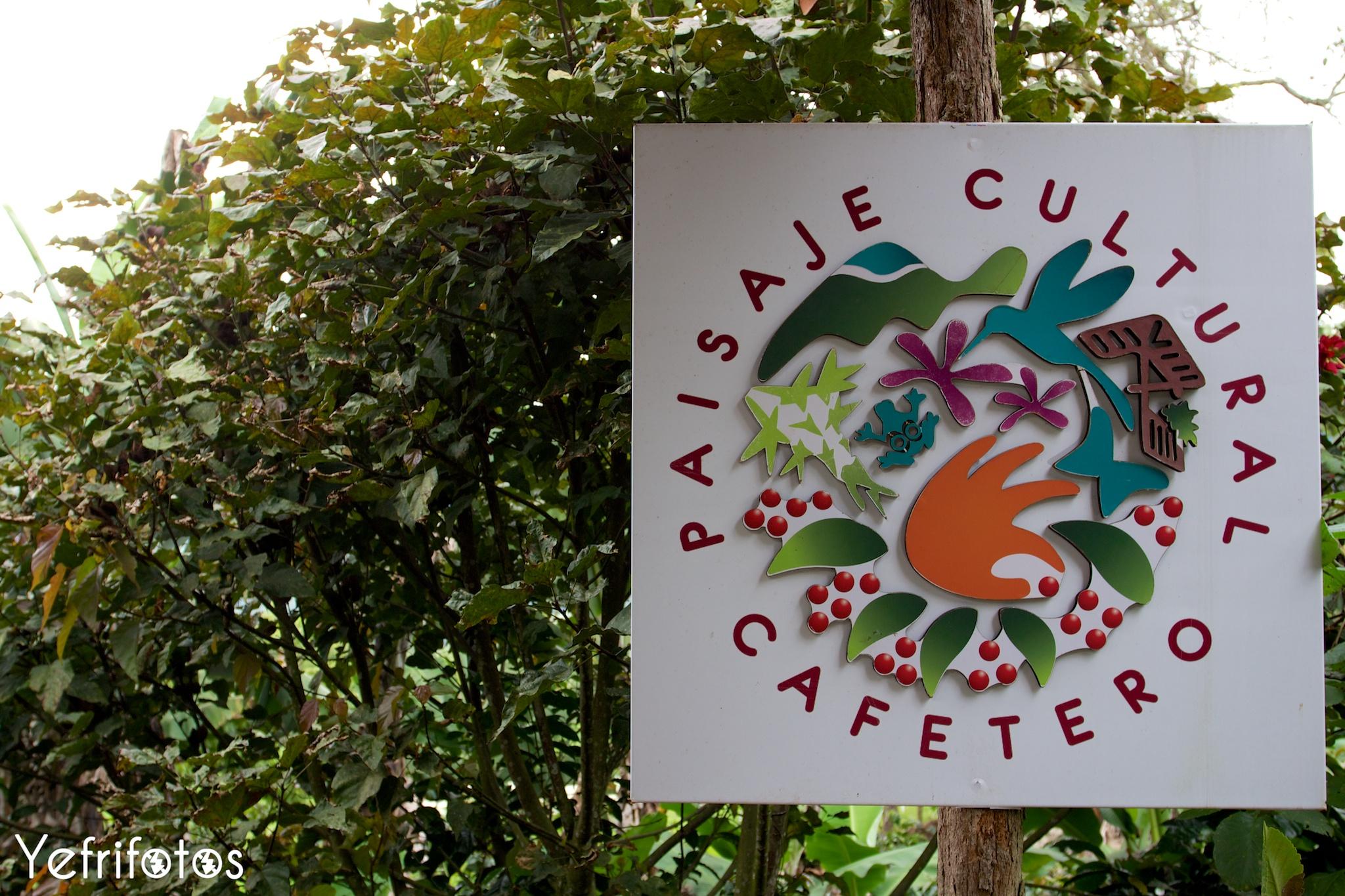 Colombie - Paisaje Cultural Cafetero