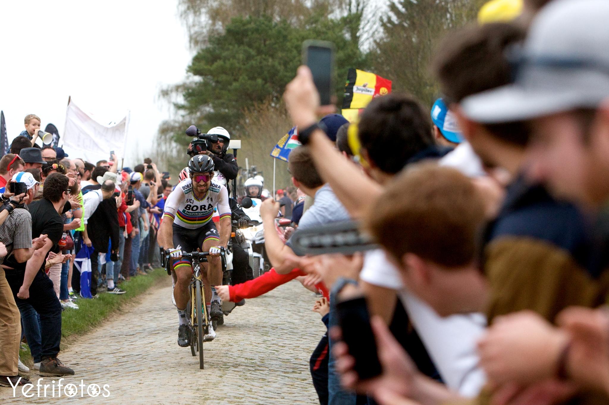 Peter Sagan Bora Hansgrohe Paris Roubaix
